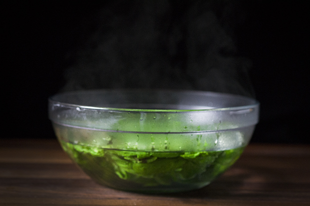 Basil Oil-Boiling Water