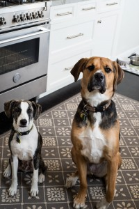 Kitchen Helpers, Arlo and Otis