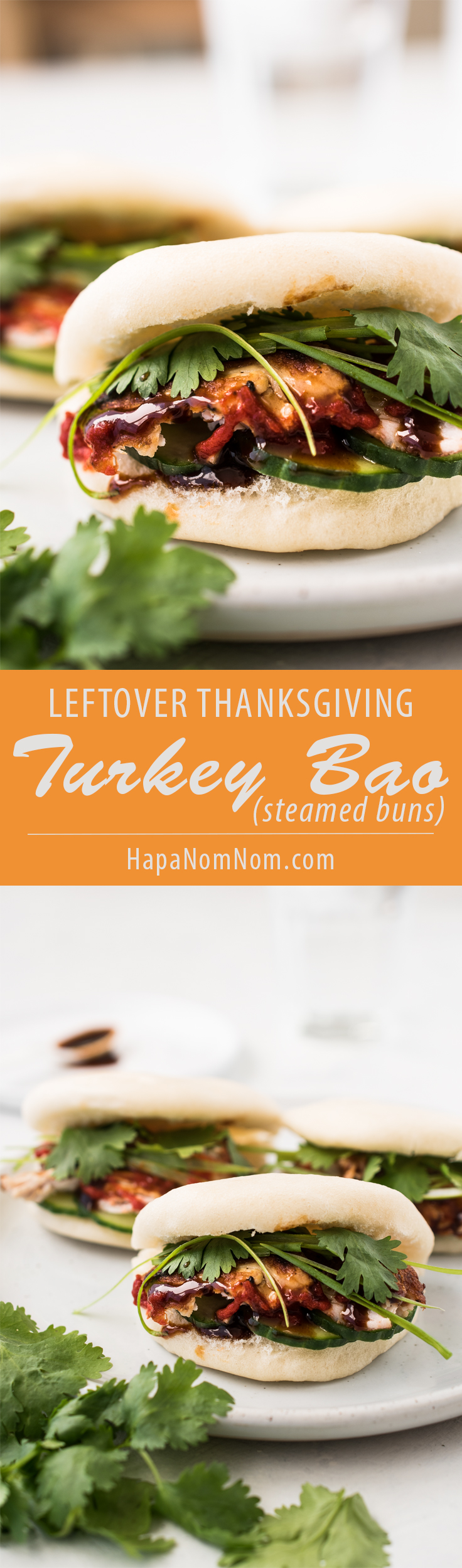 Looking to transform that leftover turkey sandwich? Try a Turkey Bao!